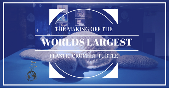 worlds largest plastic crochet turtle, one brown planet